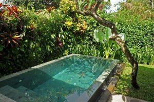 Bể bơi thiết kế kiểu sân vườn